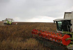 Закон о фермерских крестьянских хозяйствахв на 2020г