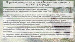 Требования к выгулу собак в краснодарском крае