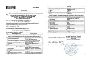 Как получить лист записи егрюл в налоговой взамен утерянного