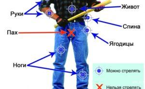 Где по закону можно стрелять из травматического пистолета
