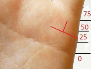 Как по руке определить сколько будет мужей у женщин