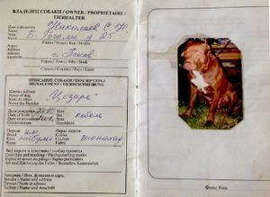 Как сделать паспорт собаке и сколько он стоит