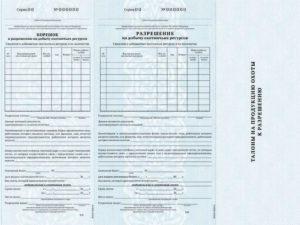 Лицензия на кабана в угодия общего пользования цена