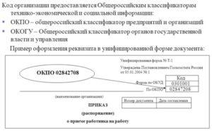 Код органа государственной власти по окогу как узнать по инн